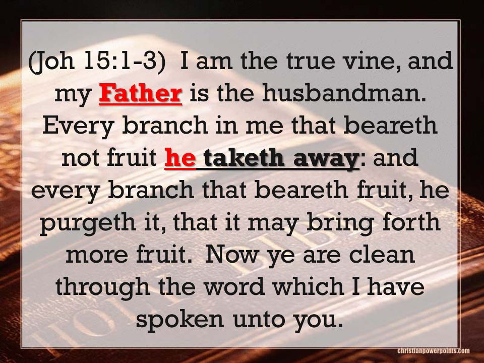 Father he taketh away (Joh 15:1-3) I am the true vine, and my Father is the husbandman. Every branch in me that beareth not fruit he taketh away: and