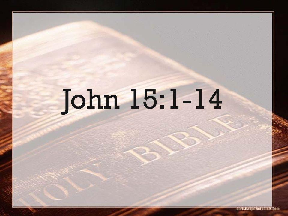 John 15:1-14