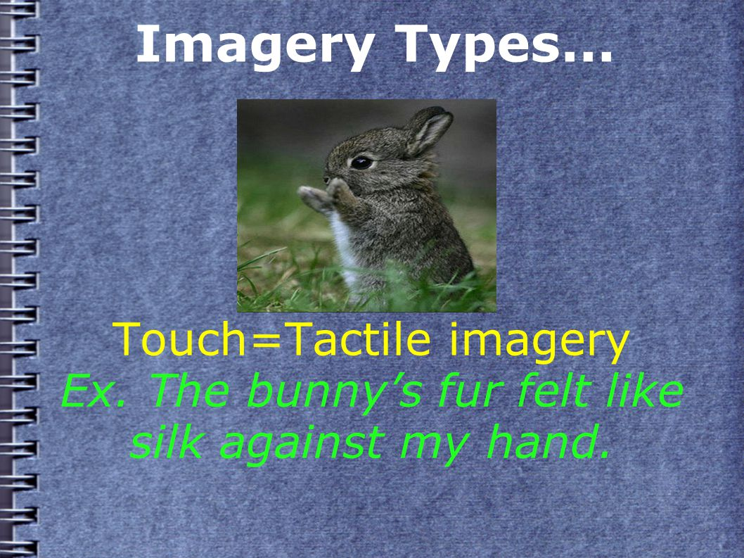 Imagery Types... Touch=Tactile imagery Ex. The bunny's fur felt like silk against my hand.
