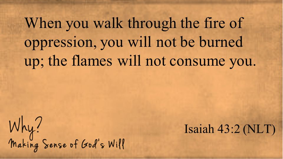 Isaiah 43:2 (NLT) When you walk through the fire of oppression, you will not be burned up; the flames will not consume you.