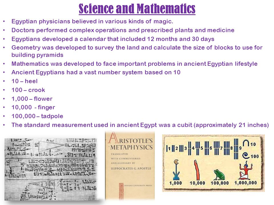 Science and Mathematics Egyptian physicians believed in various kinds of magic. Doctors performed complex operations and prescribed plants and medicin