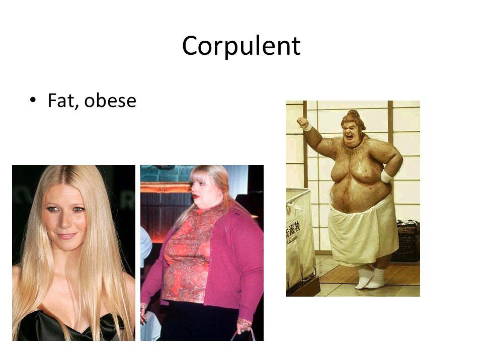 Corpulent Fat, obese