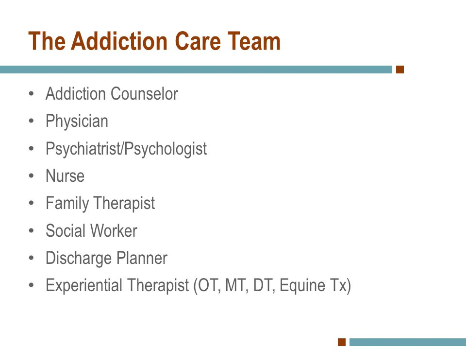 Who else may be on the Addiction Care Team.