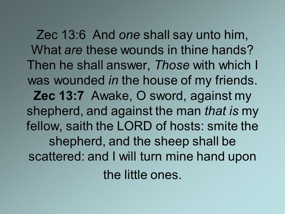 Zec 13:6 And one shall say unto him, What are these wounds in thine hands.