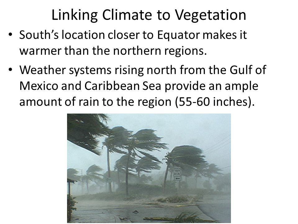 Linking Climate to Vegetation South's location closer to Equator makes it warmer than the northern regions. Weather systems rising north from the Gulf