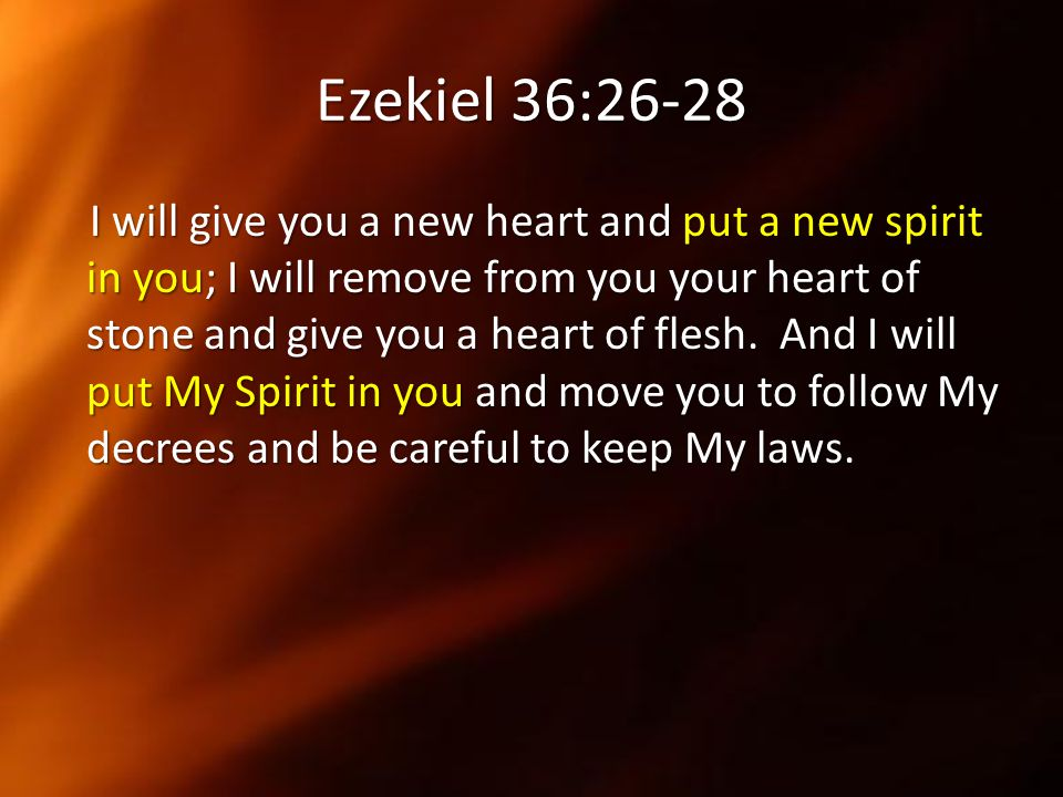 Ezekiel 36:26-28 I will give you a new heart and put a new spirit in you; I will remove from you your heart of stone and give you a heart of flesh. An