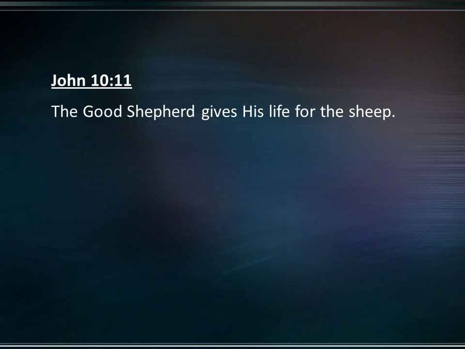 John 10:11 The Good Shepherd gives His life for the sheep.