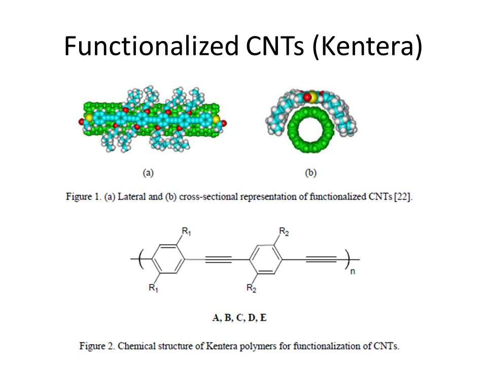 Functionalized CNTs (Kentera)