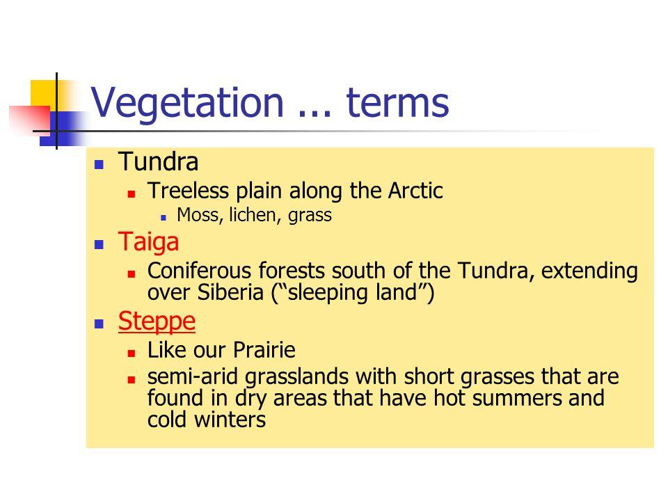 Vegetation...