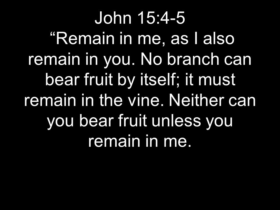 John 15:4-5 Remain in me, as I also remain in you.