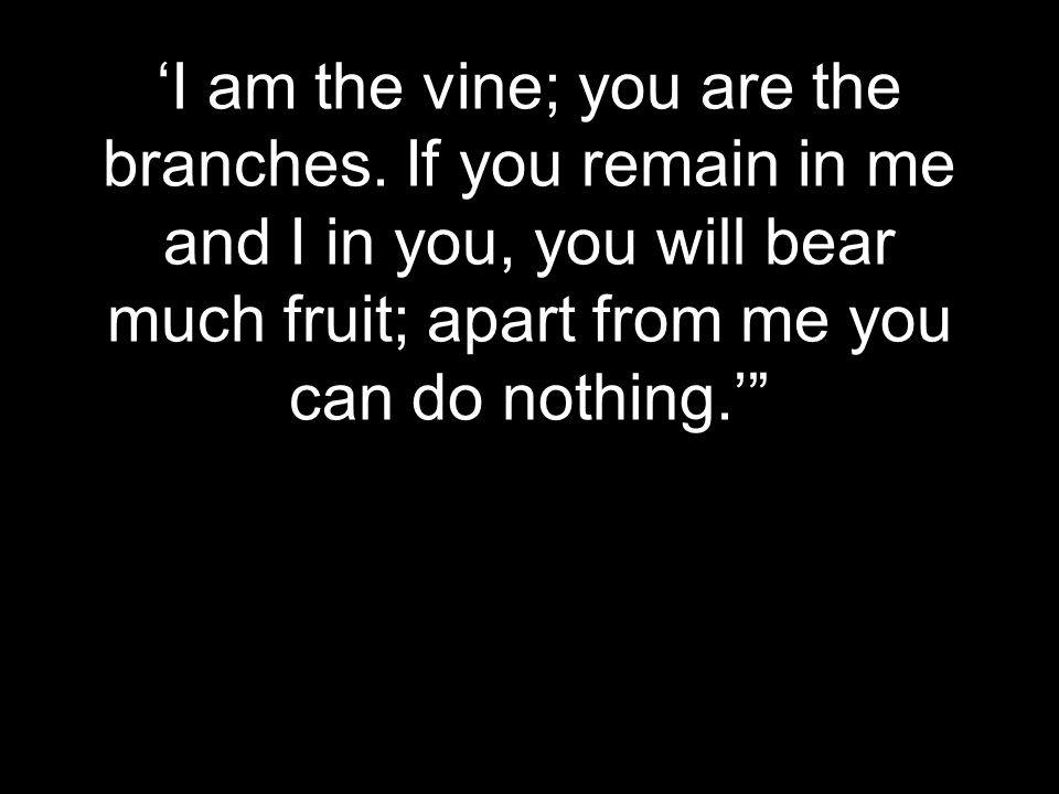'I am the vine; you are the branches.