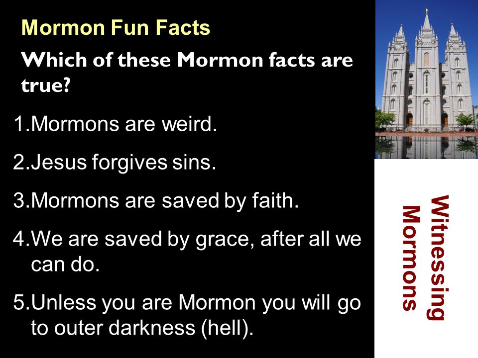 Witnessing Mormons Mormon Fun Facts Which of these Mormon facts are true? 1.Mormons are weird. 2.Jesus forgives sins. 3.Mormons are saved by faith. 4.