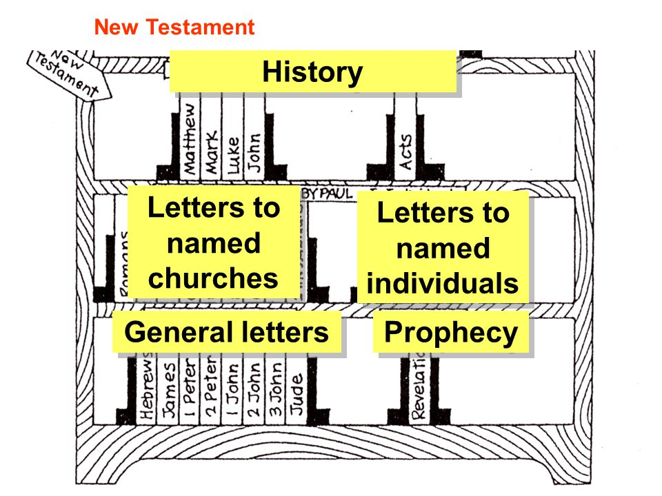 History Letters to named churches General letters Prophecy New Testament Letters to named individuals