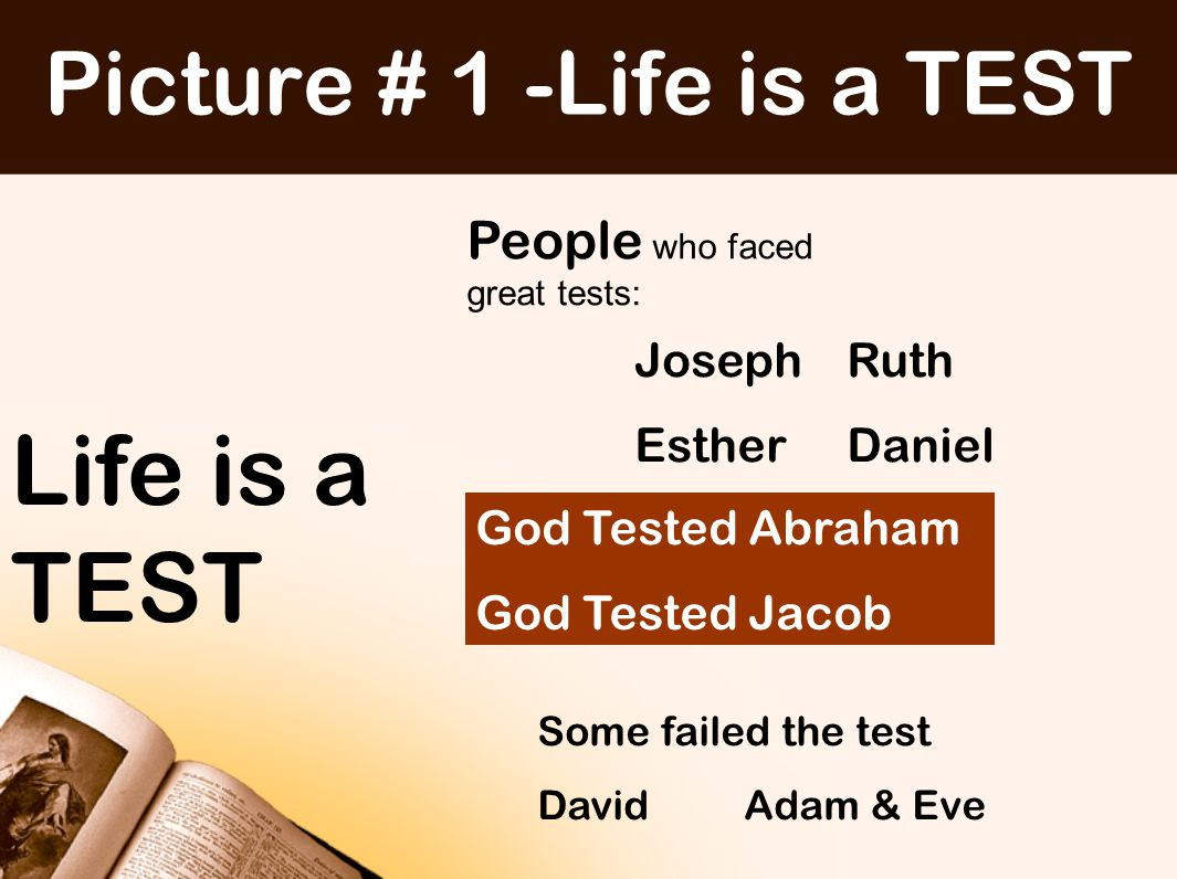 TESTS have a purpose TESTS reveal and develop true CHARACTER Since you call on a Father who judges each man's work impartially, live your lives as strangers here in reverent fear 1 Peter 1:17