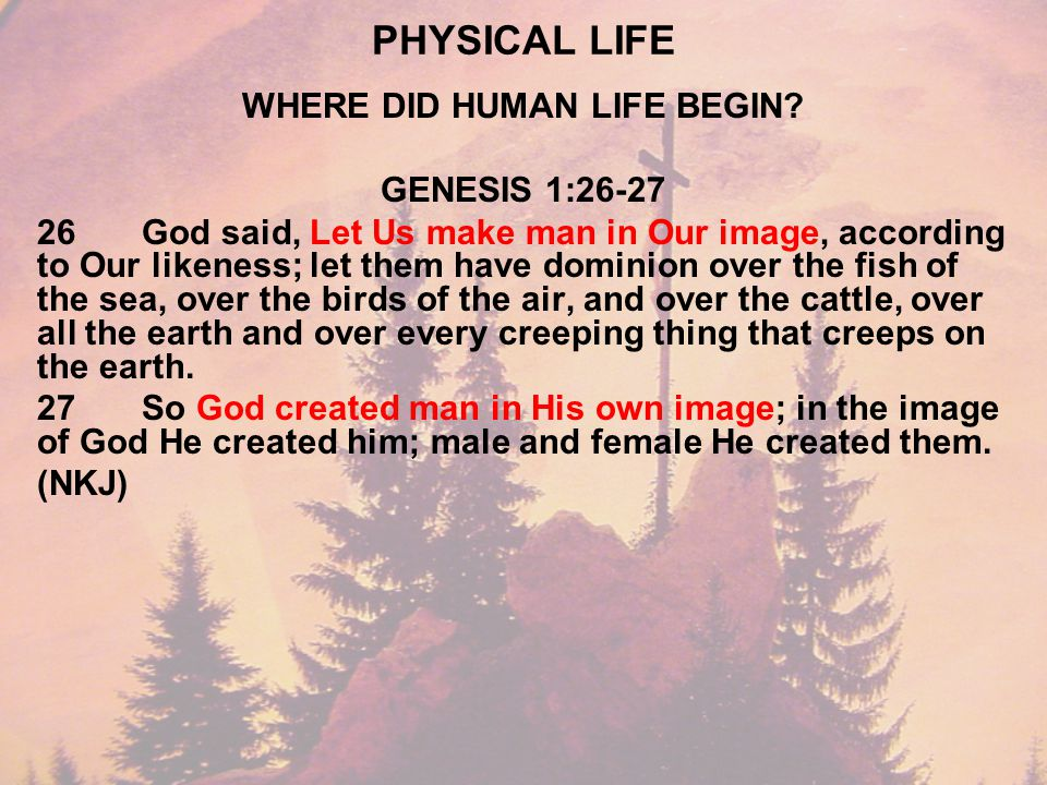 PHYSICAL LIFE WHERE DID HUMAN LIFE BEGIN.