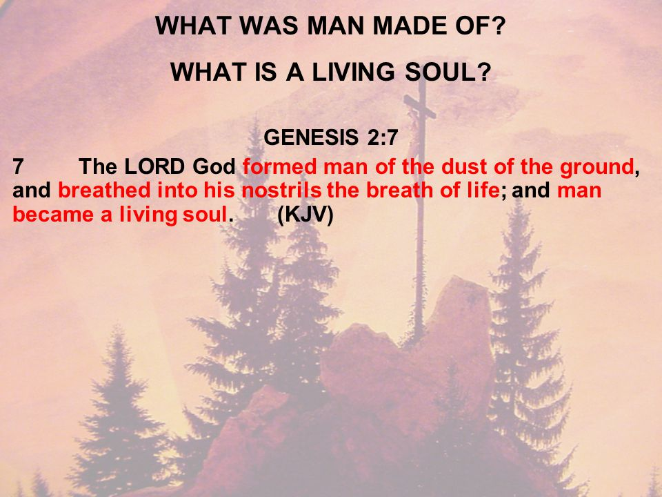 WHO CAN GIVE YOU SPIRITUAL LIFE.