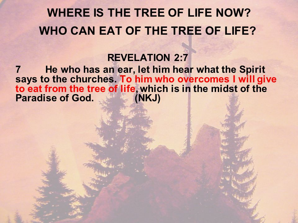 WHERE IS THE TREE OF LIFE NOW. WHO CAN EAT OF THE TREE OF LIFE.