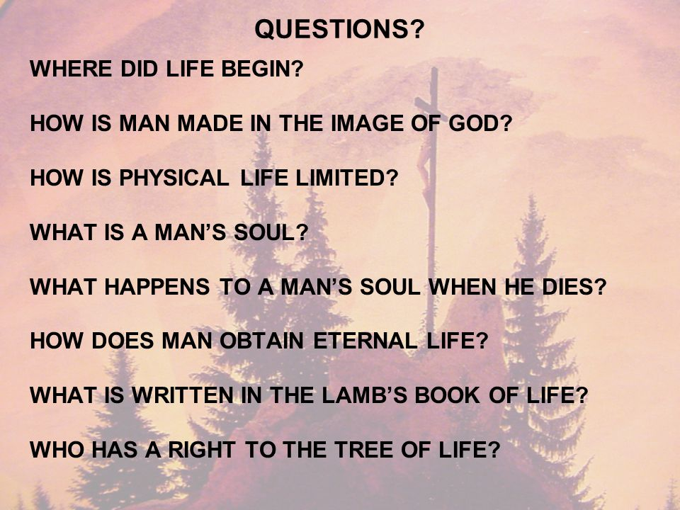 QUESTIONS. WHERE DID LIFE BEGIN. HOW IS MAN MADE IN THE IMAGE OF GOD.