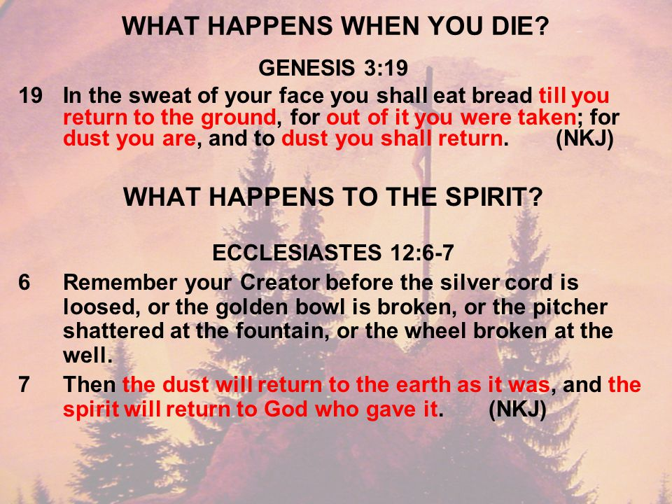 WHAT HAPPENS WHEN YOU DIE.