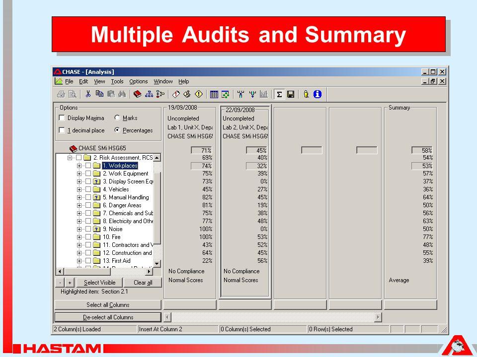 Multiple Audits and Summary