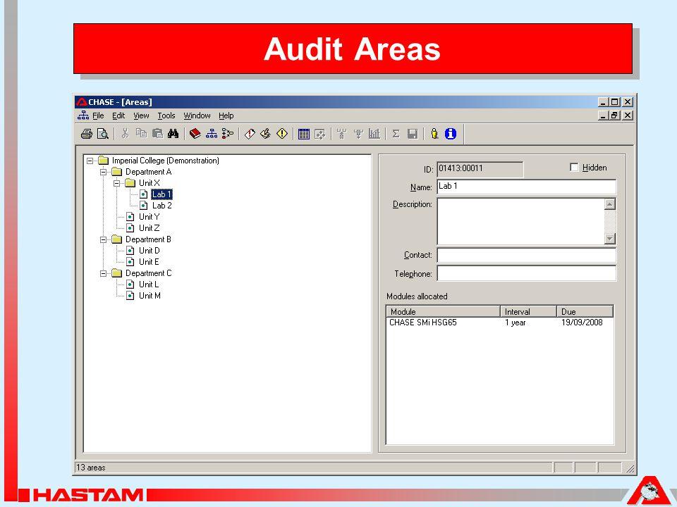 Audit Areas