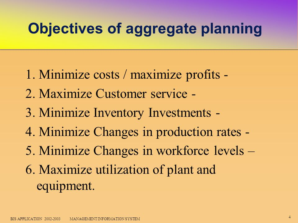 5 BIS APPLICATION 2002-2003 MANAGEMENT INFORMATION SYSTEM Among the aggregate planning strategies, Planners might try to: 1.