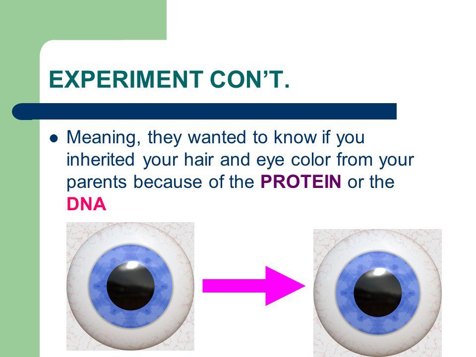 EXPERIMENT CON'T.
