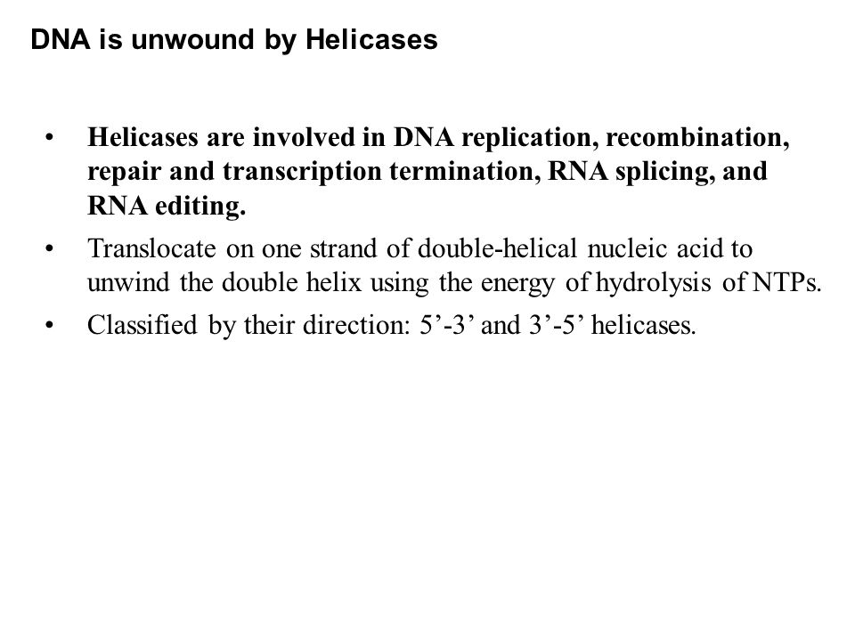 DNA is unwound by Helicases Helicases are involved in DNA replication, recombination, repair and transcription termination, RNA splicing, and RNA editing.