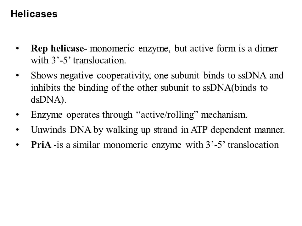 Helicases Rep helicase- monomeric enzyme, but active form is a dimer with 3'-5' translocation.