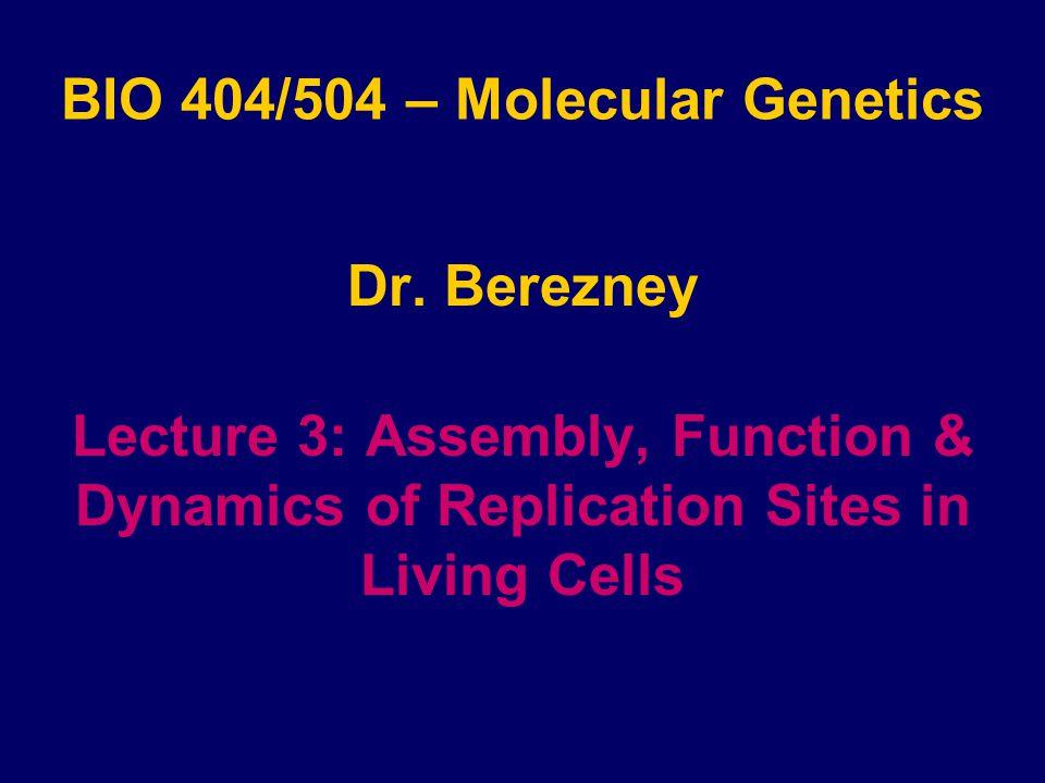 BIO 404/504 – Molecular Genetics Dr.