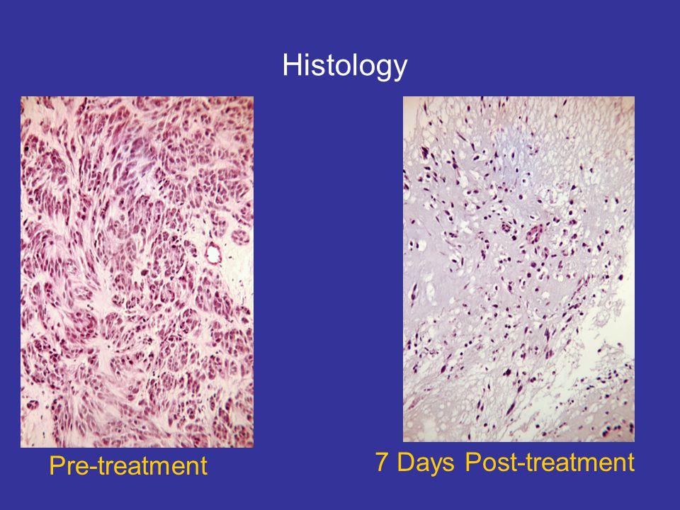7 Days Post-treatment Pre-treatment Histology