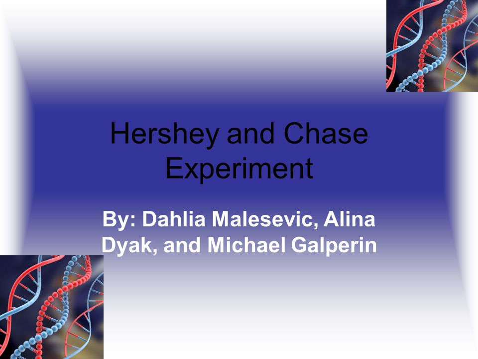 Hershey and Chase Experiment By: Dahlia Malesevic, Alina Dyak, and Michael Galperin