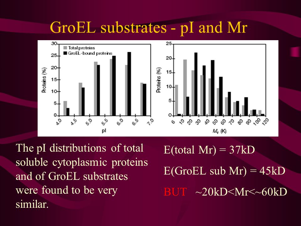 A defined set of GroEL substrates – Gel
