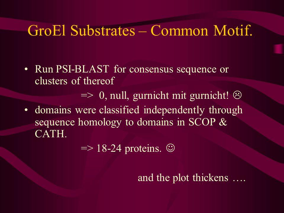GroEL substrates – Identification. Analyze spots - MS.