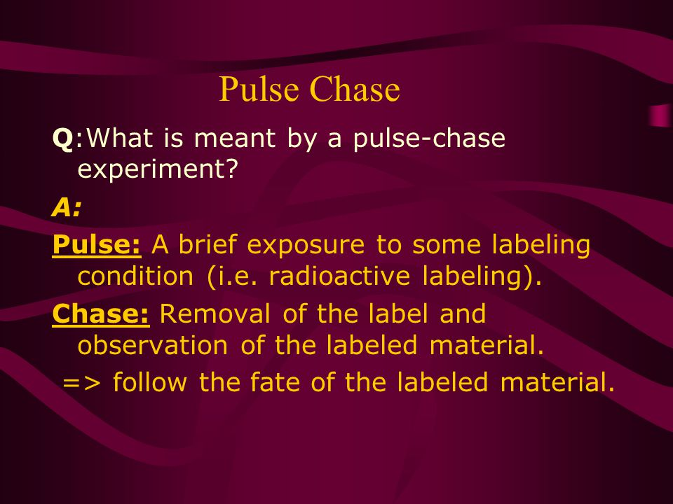 Pulse Chase Q:What is meant by a pulse-chase experiment.
