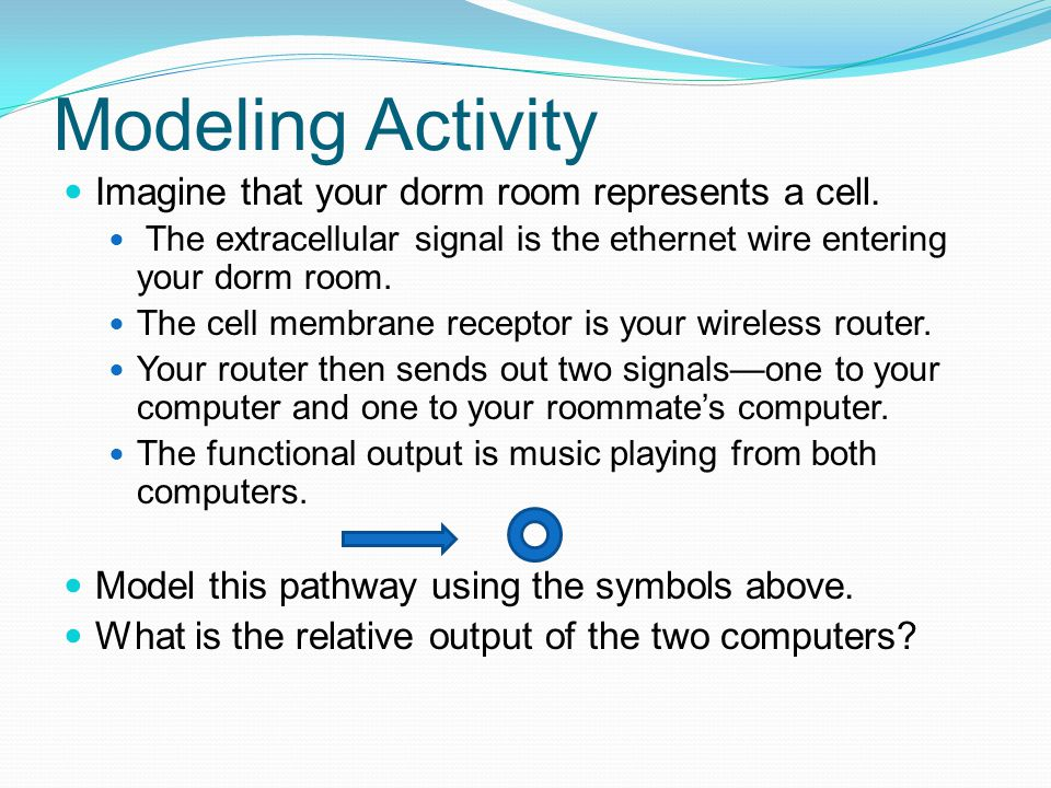 Modeling Activity Imagine that your dorm room represents a cell.