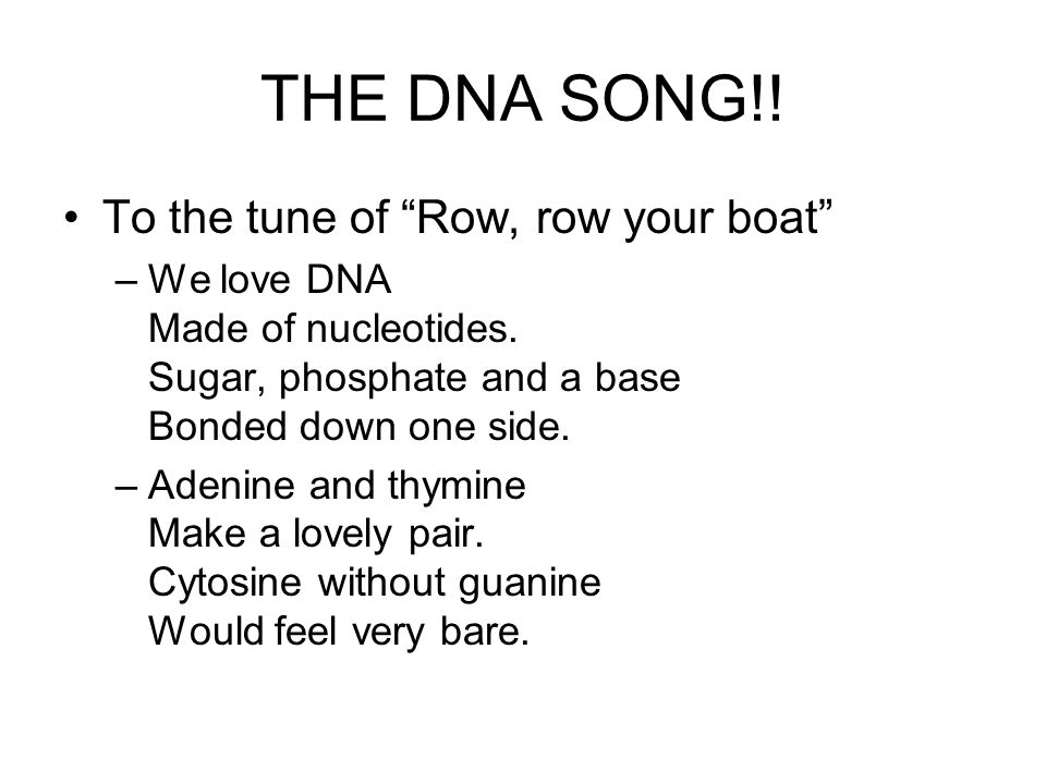 "THE DNA SONG!! To the tune of ""Row, row your boat"" –We love DNA Made of nucleotides. Sugar, phosphate and a base Bonded down one side. –Adenine and th"