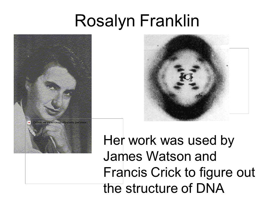 Rosalyn Franklin Her work was used by James Watson and Francis Crick to figure out the structure of DNA
