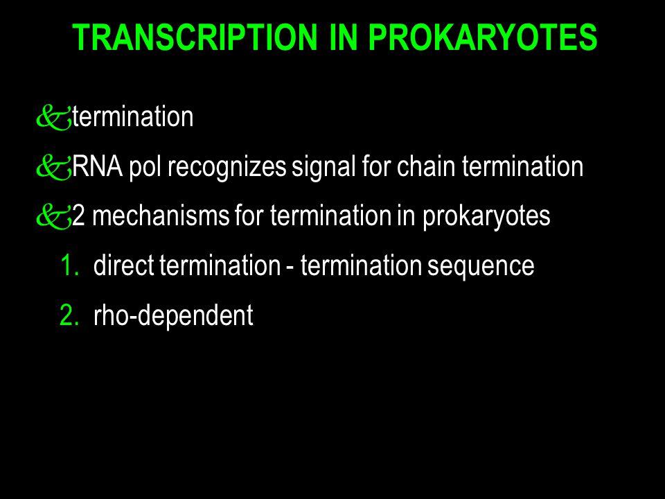 ktermination kRNA pol recognizes signal for chain termination k 2 mechanisms for termination in prokaryotes 1.