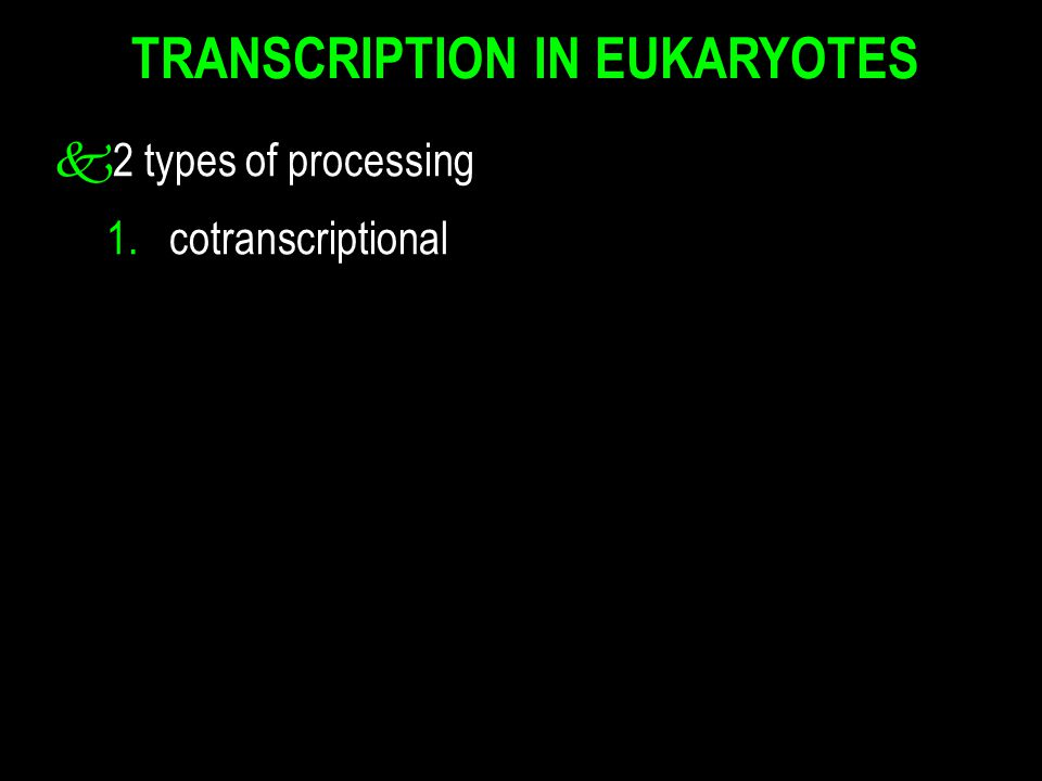 TRANSCRIPTION IN EUKARYOTES k2 types of processing 1. cotranscriptional