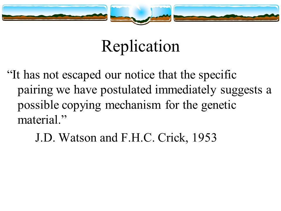 Replication It has not escaped our notice that the specific pairing we have postulated immediately suggests a possible copying mechanism for the genetic material. J.D.
