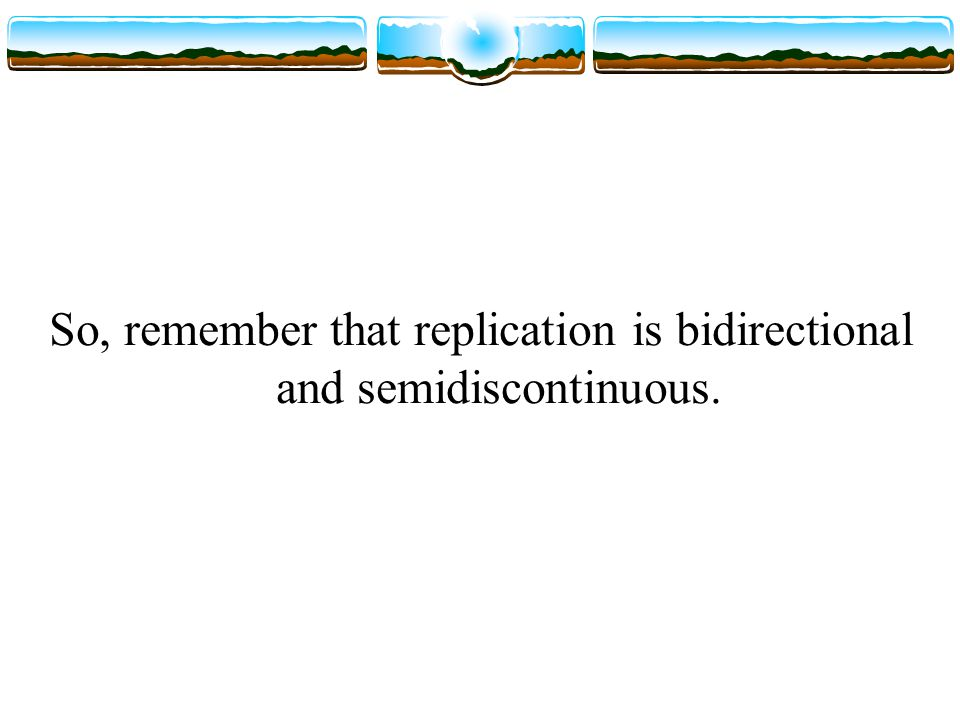 So, remember that replication is bidirectional and semidiscontinuous.