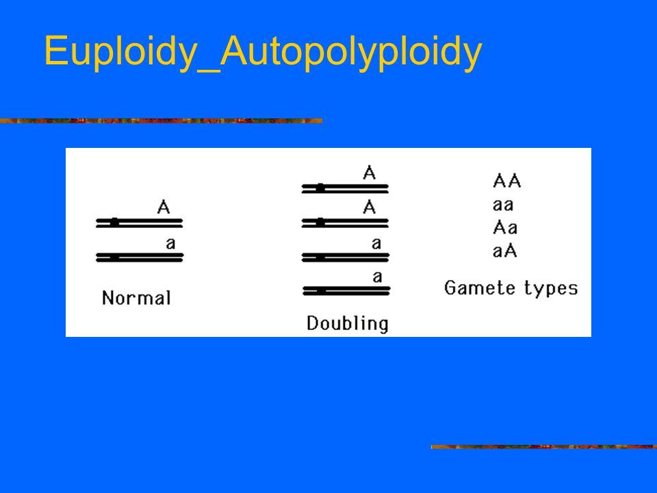 Euploidy_Autopolyploidy