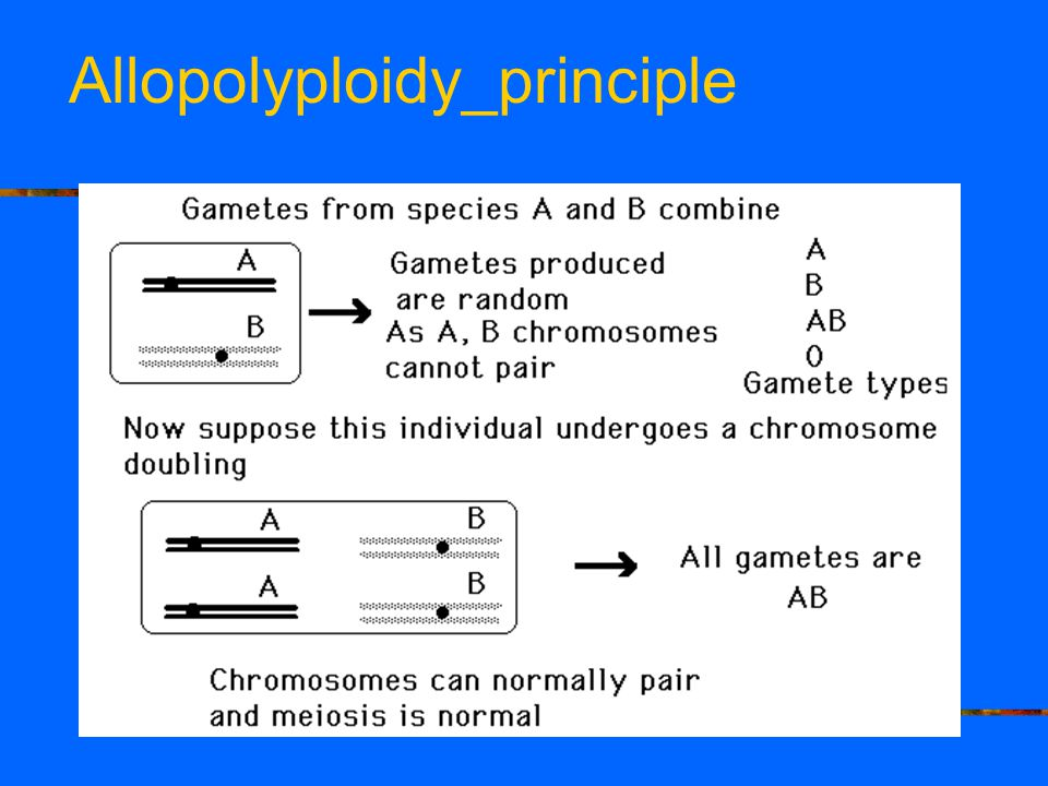 Allopolyploidy_principle