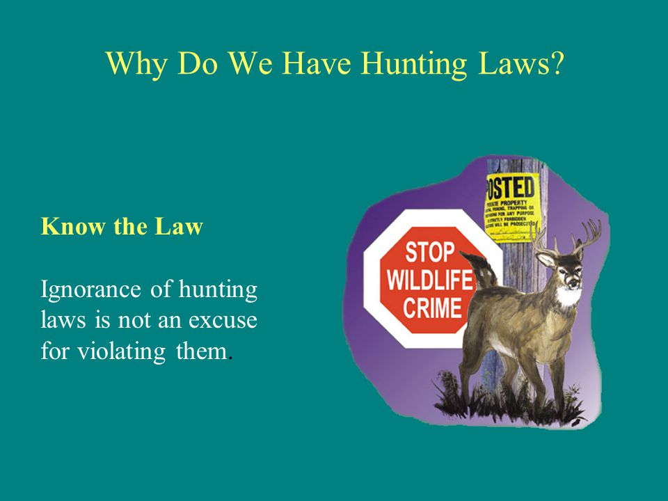 Why Do We Have Hunting Laws? Know the Law Ignorance of hunting laws is not an excuse for violating them.