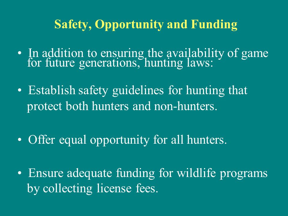 Safety, Opportunity and Funding In addition to ensuring the availability of game for future generations, hunting laws: Establish safety guidelines for