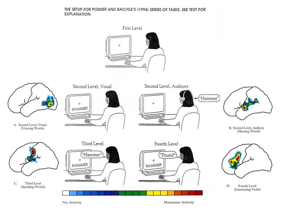 PET Scan Subtractive Methodology