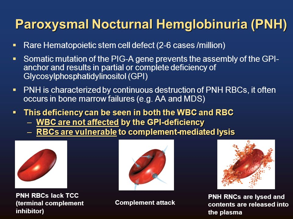 CCS PNH Guidelines Suggestions for PNH Testing by ICCS PNH Guidelines Guidelines for the diagnosis and monitoring of paroxysmal nocturnal hemoglobinuria and related disorders by flow cytometry.