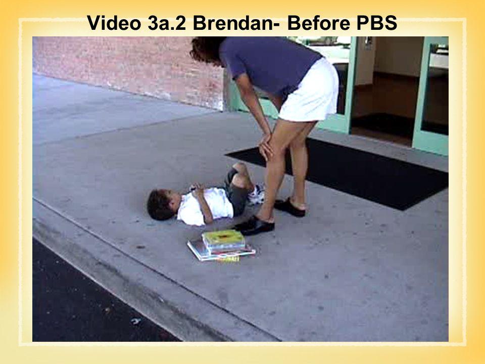 Video 3a.2 Brendan- Before PBS