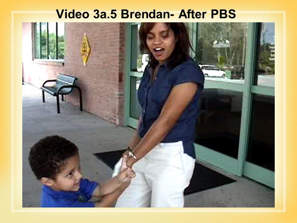 Video 3a.5 Brendan- After PBS